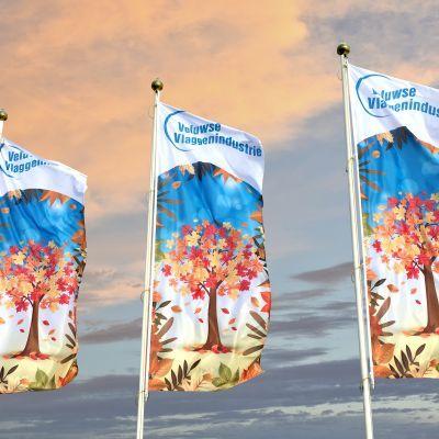 Veluwse Vlaggen Industrie Over Ons