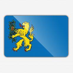 Vlag gemeente Brummen