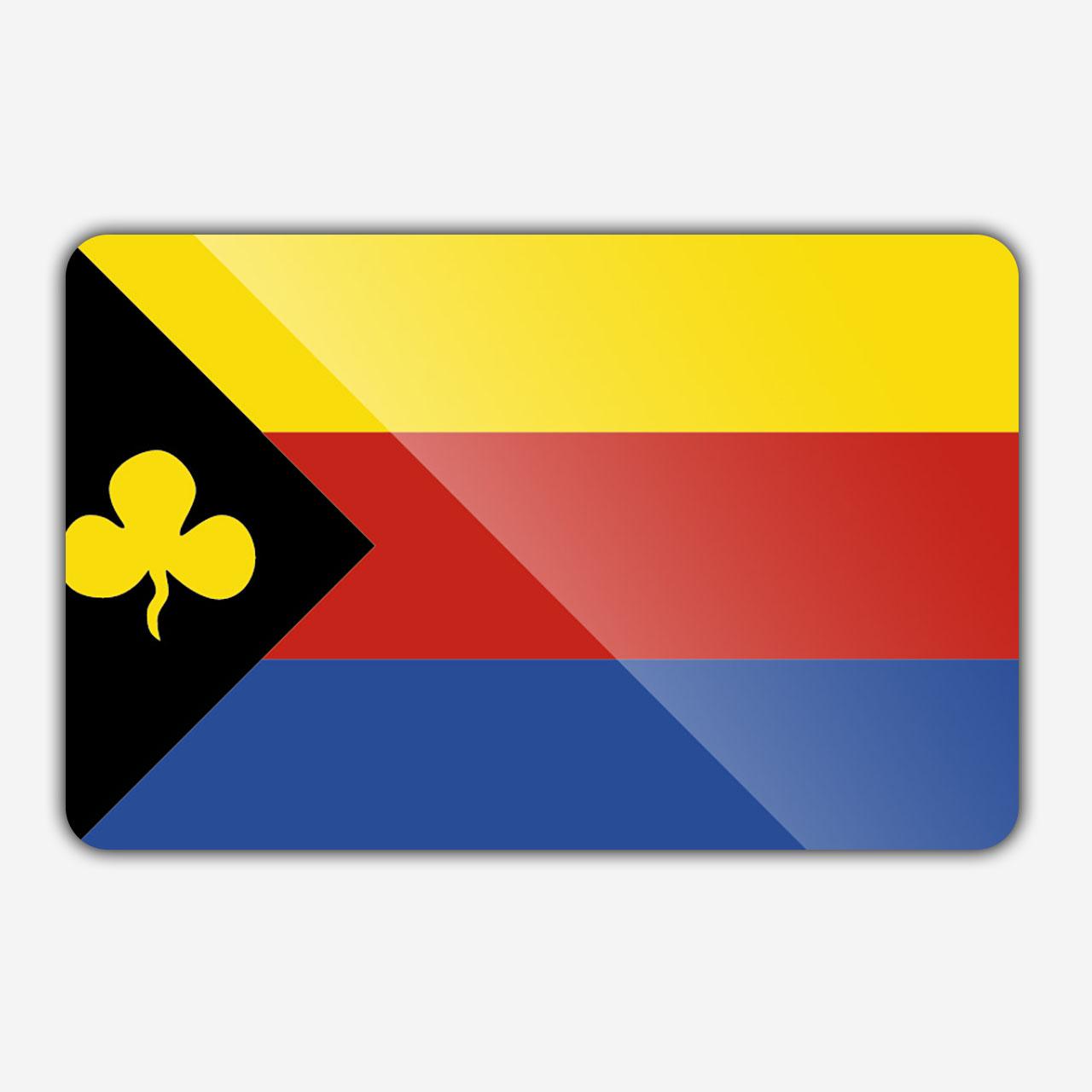 Vlag gemeente Delfzijl