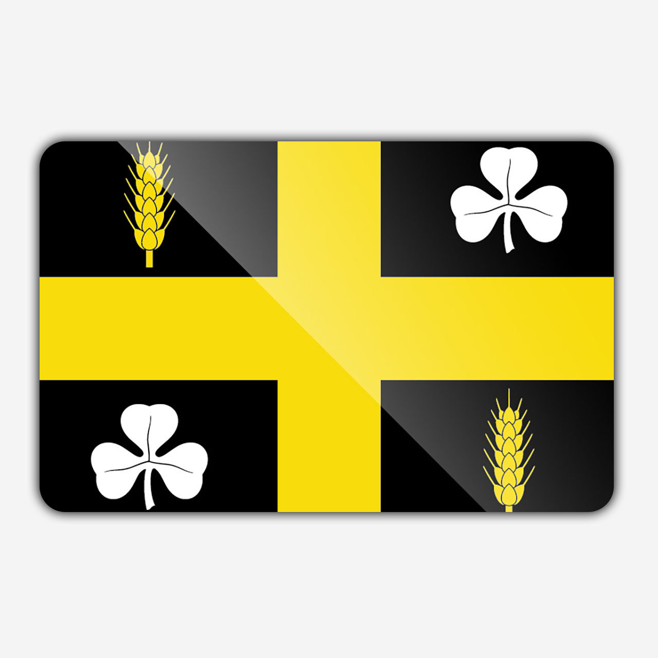 Vlag gemeente Raalte