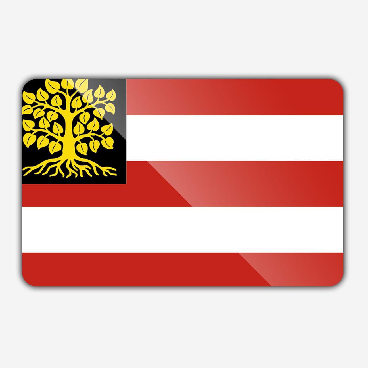 Vlag gemeente 's Hertogenbosch
