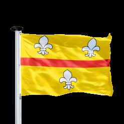 Dorp- en stadsvlaggen